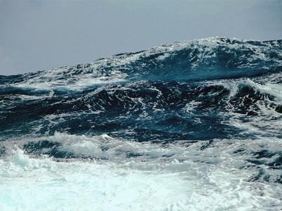 К берегам США приближается мощный ураган Олаф