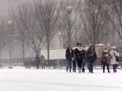 Мощные снегопады стали причиной гибели 8 человек в США