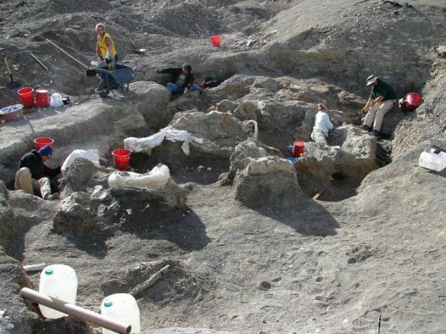 Локация раскопок в Патагонии (фото K. Lacovara).