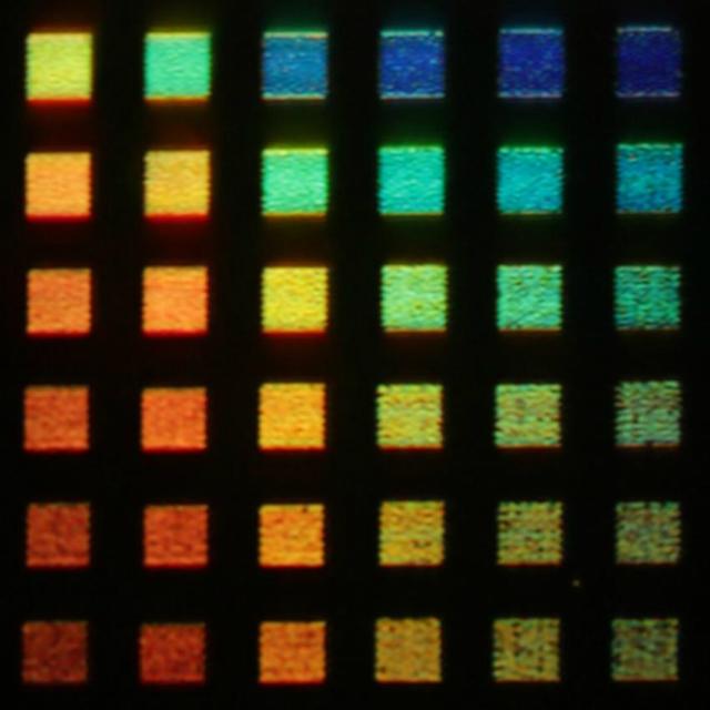 Новая технология способна воспроизводить десятки цветов (фото J. Olson/Rice University).