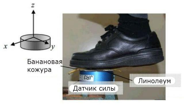 На линолеуме банановая кожура делает подошву ботинка более скользкой лишь на одну пятую (иллюстрация из журнала Tribology/перевод Вести.Наука).