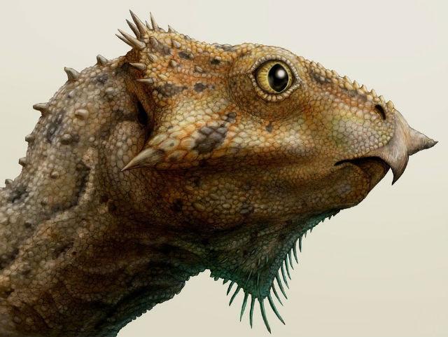 Реконструкция головы древнейшего рогатого динозавра (иллюстрация Brian Engh).