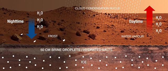 Дневной-ночной цикл гипотетической марсианской воды (иллюстрация Martín-Torresand Zorzano).