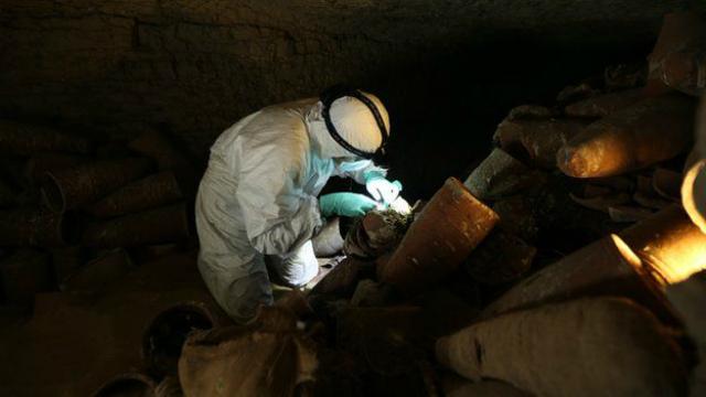 Исследователь работает в катакомбах, содержащих более двух миллионов мумифицированных птиц-ибисов (фото BBC).