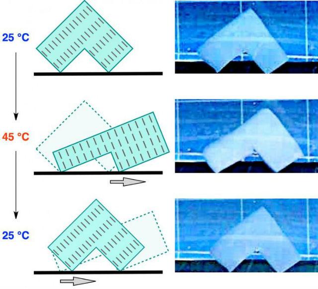 Ноги L-образного куска полимера своевременно растягивались и сокращались, позволяя объекту буквально шагать в воде (иллюстрация RIKEN).