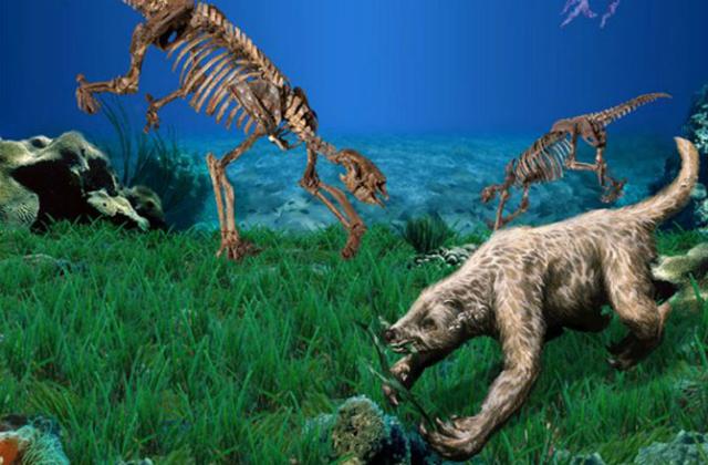 Восстановленный облик морского ленивца и его скелет (иллюстрация Philippe Loubry, William L. Parsons).