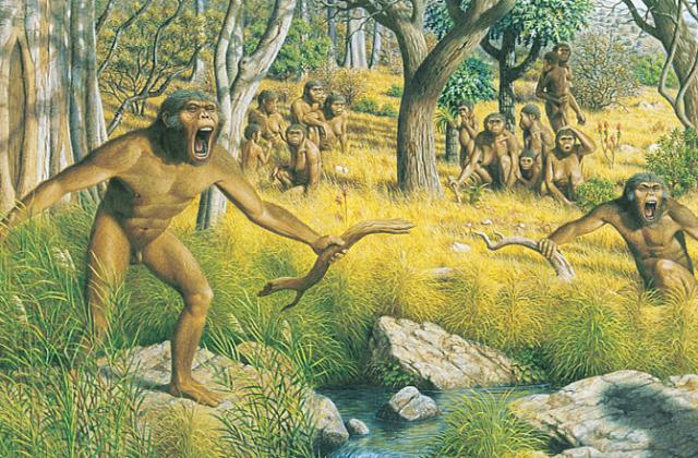 Возможно, эти древние предки человека жили три миллиона лет назад (иллюстрация Matheusvieeira, Wikimedia Commons).