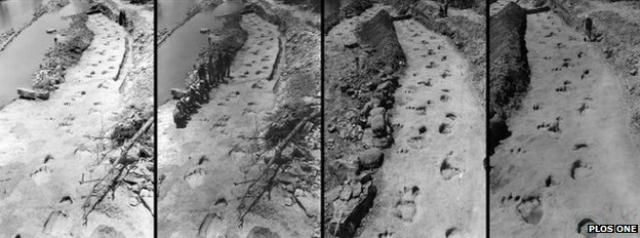 Для реконструкции было использовано 17 фотографий (фото PLoS ONE).