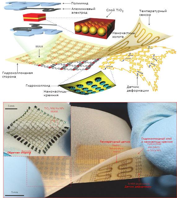 """Строение и датчики """"второй кожи"""" (иллюстрация Nature Nanotechnology)."""