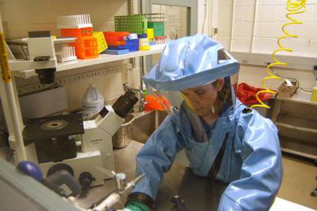 Вспышку лихорадки Эбола в Западной Африке признали самой сложной в истории (фото Wikimedia Commons).