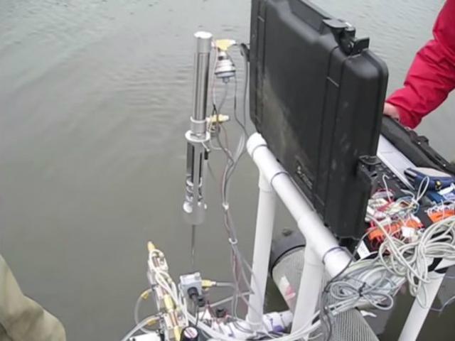 """RoboClam способен проникать в землю так же быстро, как и природные """"диггеры"""" (фото MIT)."""