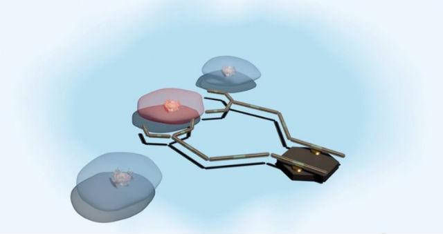 Разработка будет интегрирована в нанороботов, которые будут искать поражённые клетки, сами диагностировать заболевание и выдавать нужное лекарство (иллюстрация University of Texas).