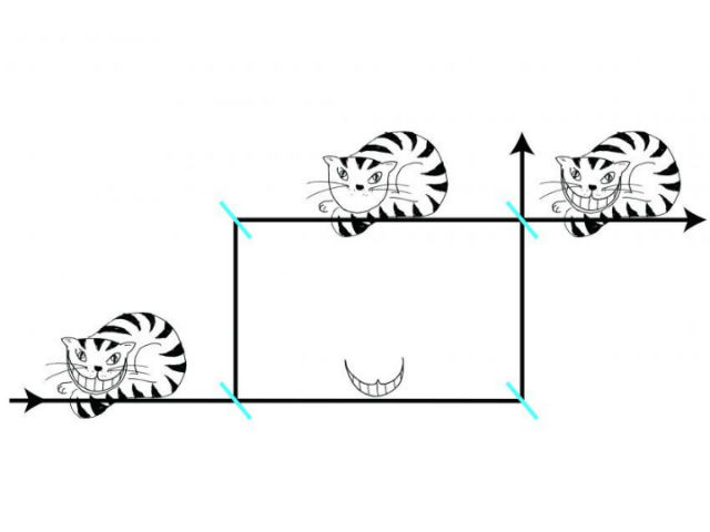 Нейтроны в эксперименте вели себя словно Чеширские коты: сами частицы и их спины оказывали пространственно разделены (иллюстрация Leon Filter/Vienna University of Technology).