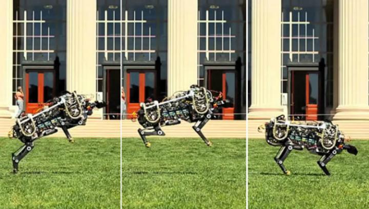 Робот-гепард теперь бегает и прыгает, как настоящий