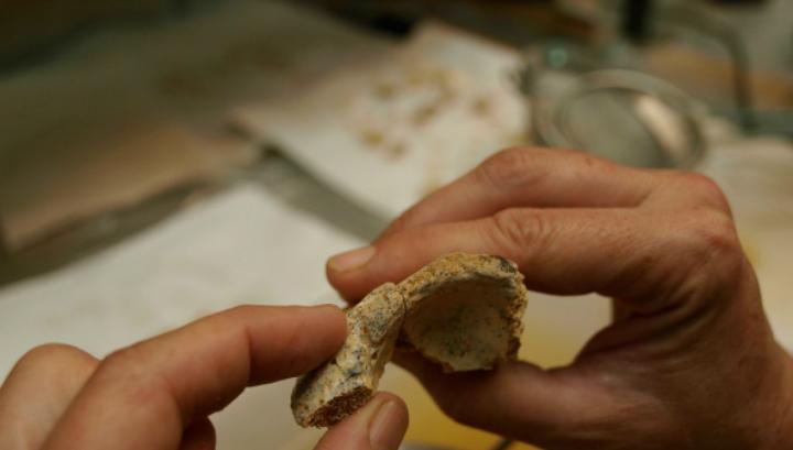 Исследователь рассматривает часть черепа 17 в лаборатории (фото Javier Trueba/Madrid Scientific Films).