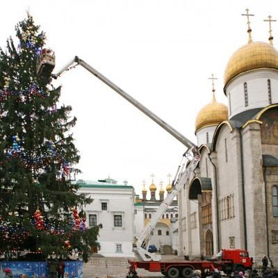 Главную елку России нашли в Истринском районе Подмосковья