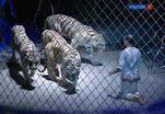 В Москве подвёл итоги Всемирный фестиваль циркового искусства