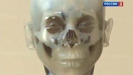 В Японии научились делать 3D-модели эмбрионов