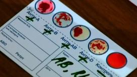 Наше настроение влияет на состав крови