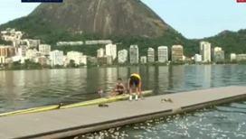 Подготовка к Олимпиаде-2016. Водоемы Бразилии кишат мертвой рыбой