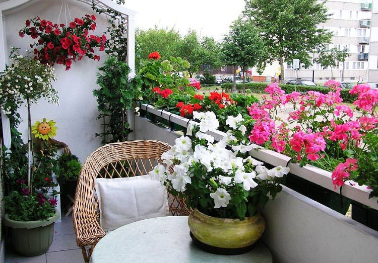 Apartment ideas balcony: small apartment garden ideas. apartment ...